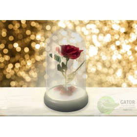 Paladone Toy Box: Disney Beauty and the Beast - Enchanted Rose Light